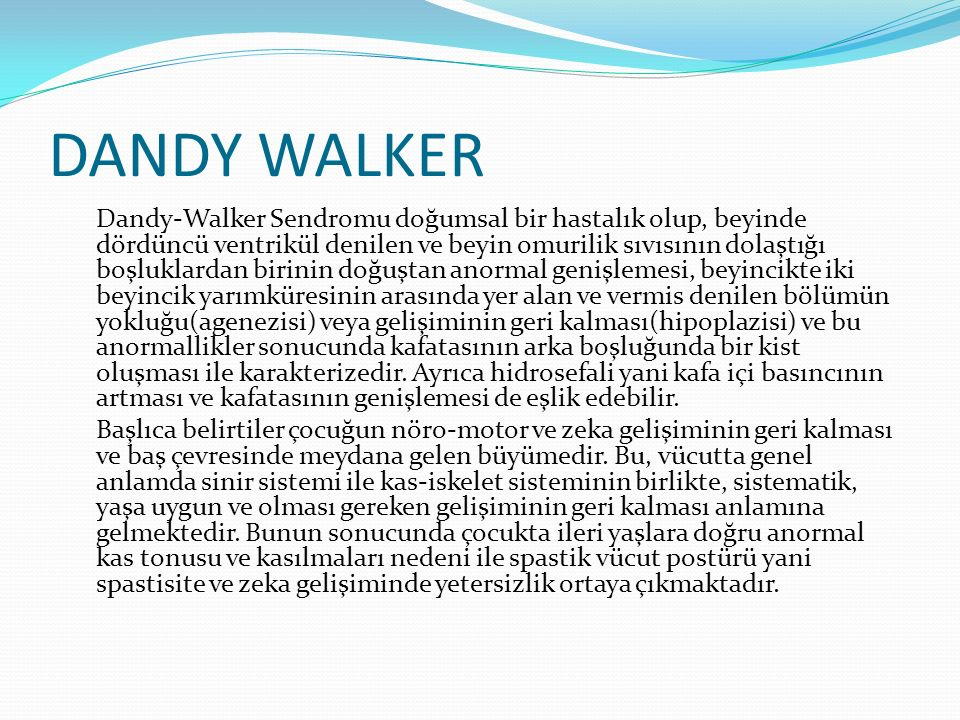 DANDY WALKER