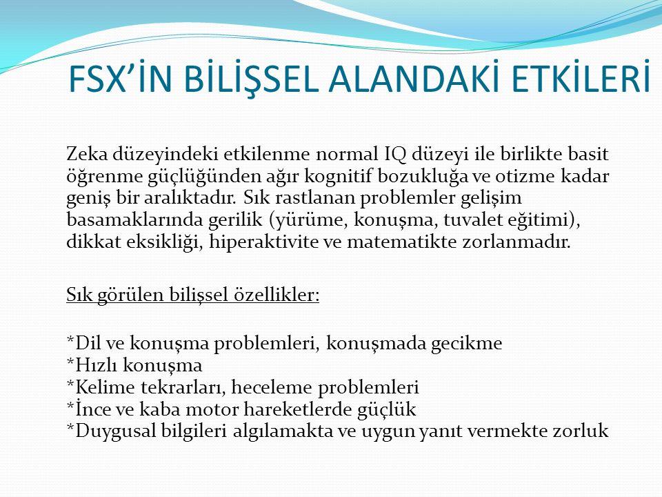 FSX'İN BİLİŞSEL ALANDAKİ ETKİLERİ