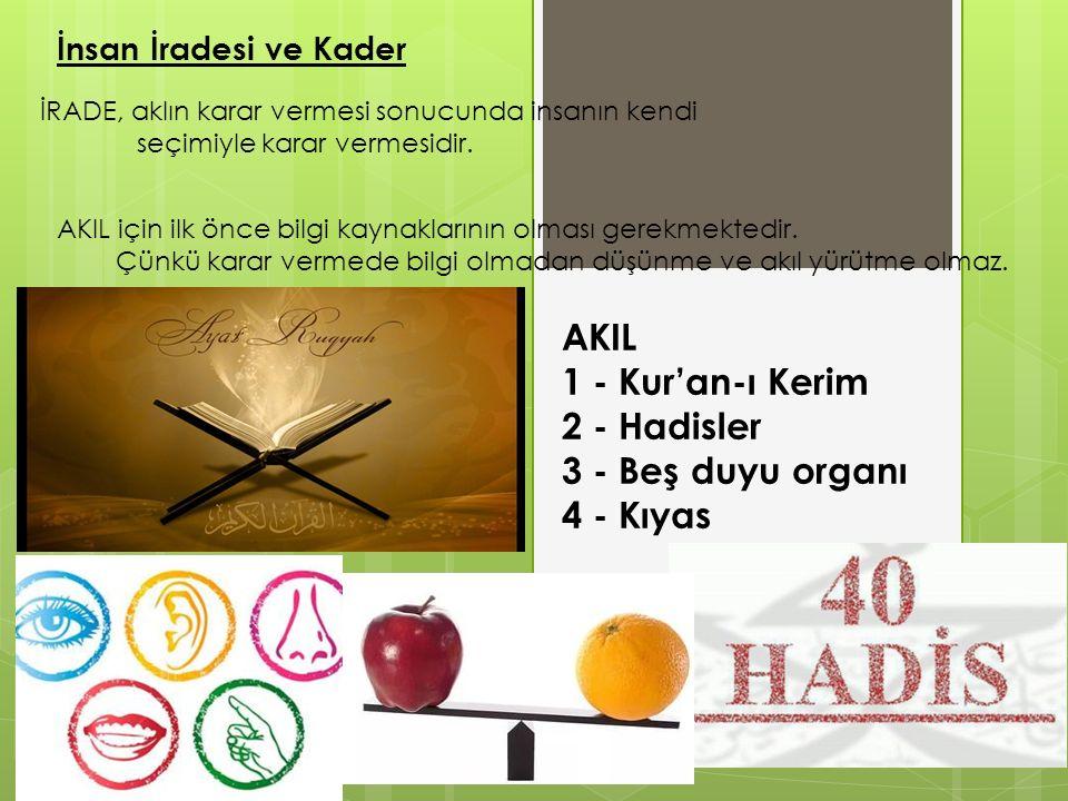 AKIL 1 - Kur'an-ı Kerim 2 - Hadisler 3 - Beş duyu organı 4 - Kıyas