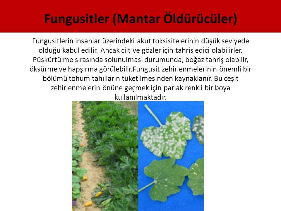 Fungusitler (Mantar Öldürücüler)