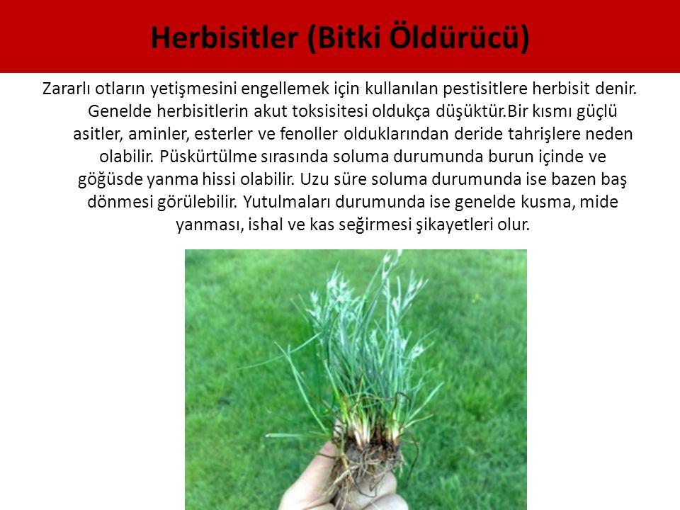 Herbisitler (Bitki Öldürücü)