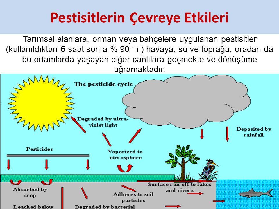Pestisitlerin Çevreye Etkileri