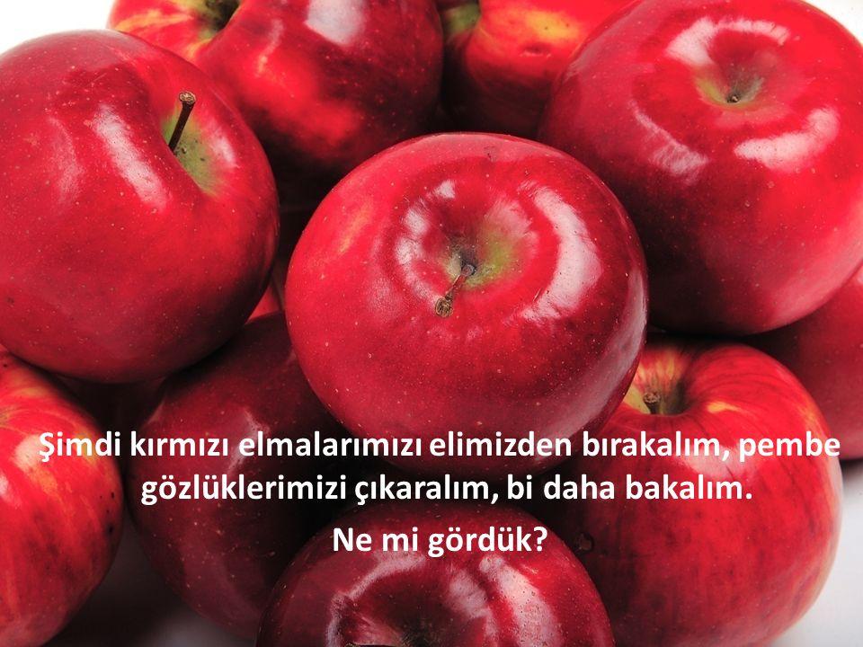 Şimdi kırmızı elmalarımızı elimizden bırakalım, pembe gözlüklerimizi çıkaralım, bi daha bakalım.
