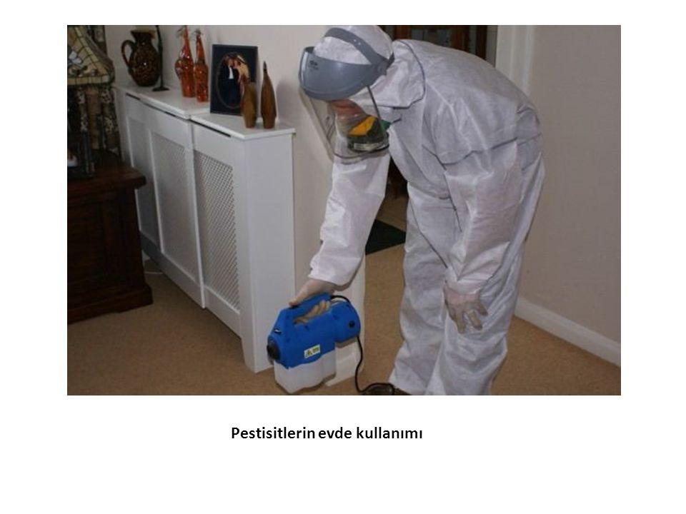 Pestisitlerin evde kullanımı