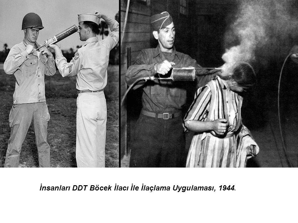 İnsanları DDT Böcek İlacı İle İlaçlama Uygulaması, 1944.