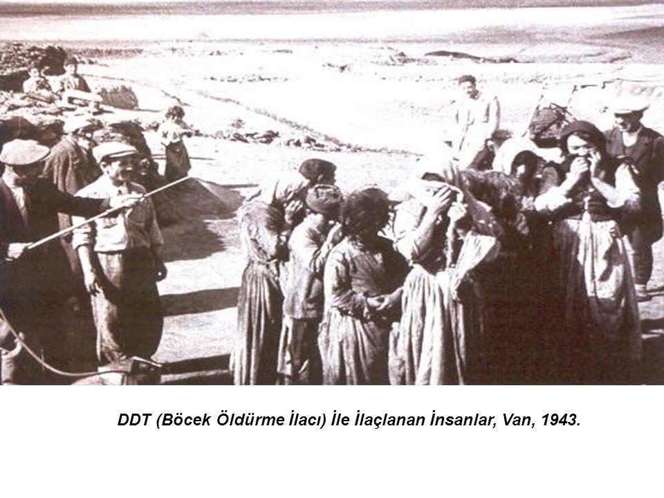 DDT (Böcek Öldürme İlacı) İle İlaçlanan İnsanlar, Van, 1943.