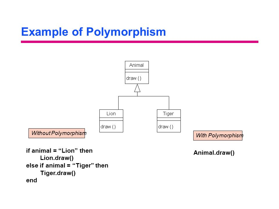 Example of Polymorphism