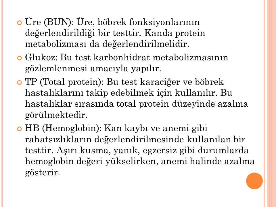 Üre (BUN): Üre, böbrek fonksiyonlarının değerlendirildiği bir testtir