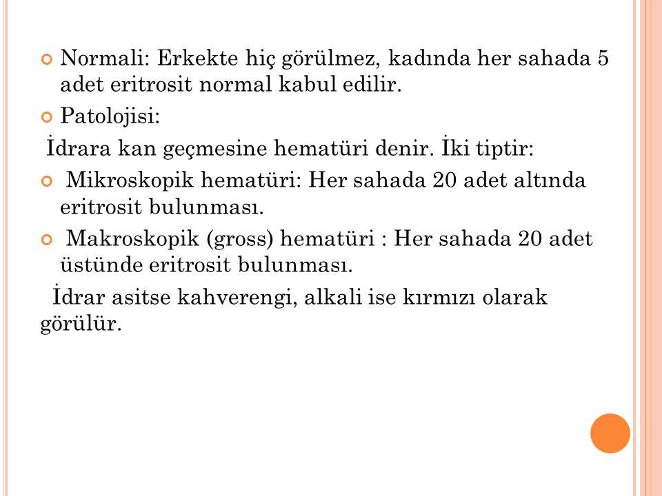 Normali: Erkekte hiç görülmez, kadında her sahada 5 adet eritrosit normal kabul edilir.