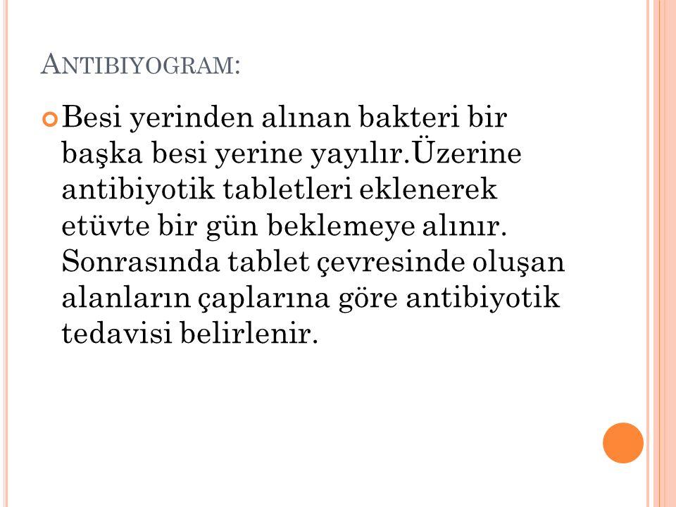 Antibiyogram:
