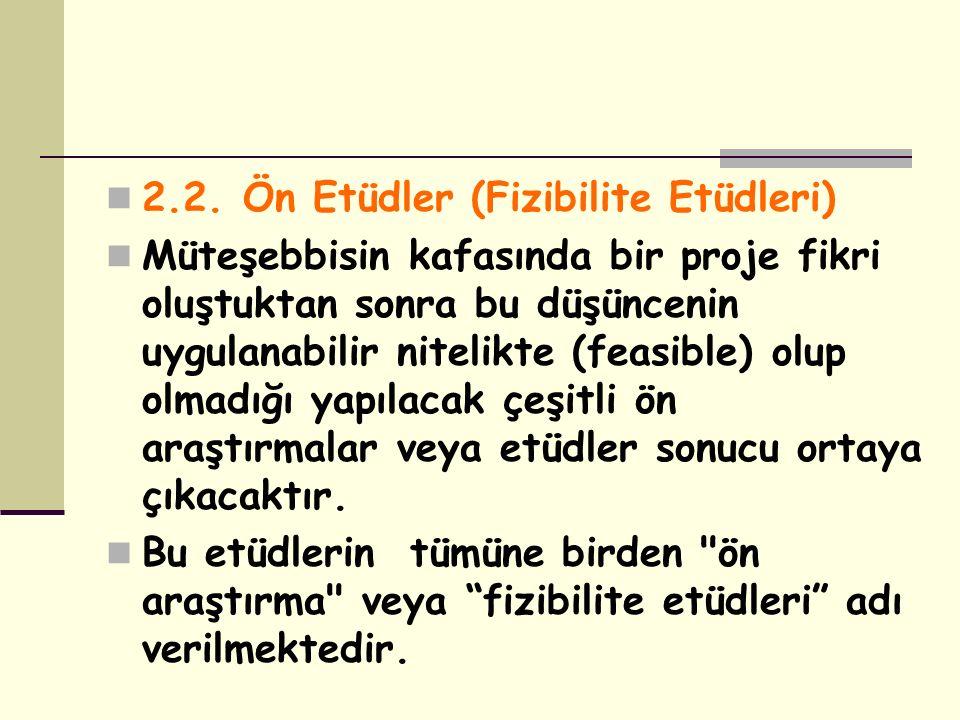 2.2. Ön Etüdler (Fizibilite Etüdleri)