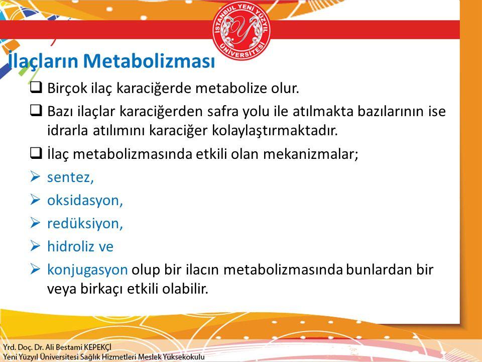 İlaçların Metabolizması