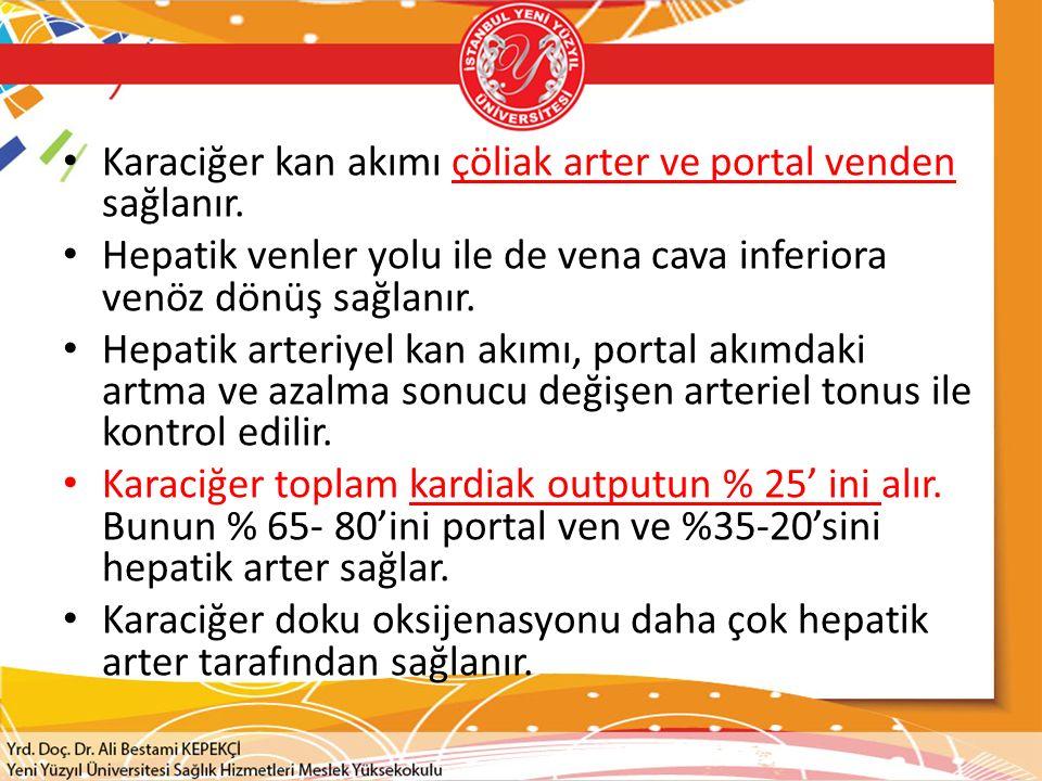 Karaciğer kan akımı çöliak arter ve portal venden sağlanır.