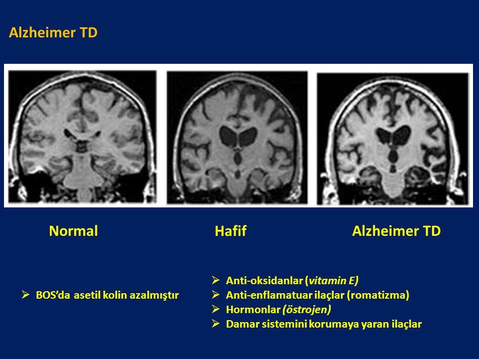 Alzheimer TD Normal Hafif Alzheimer TD Anti-oksidanlar (vitamin E)