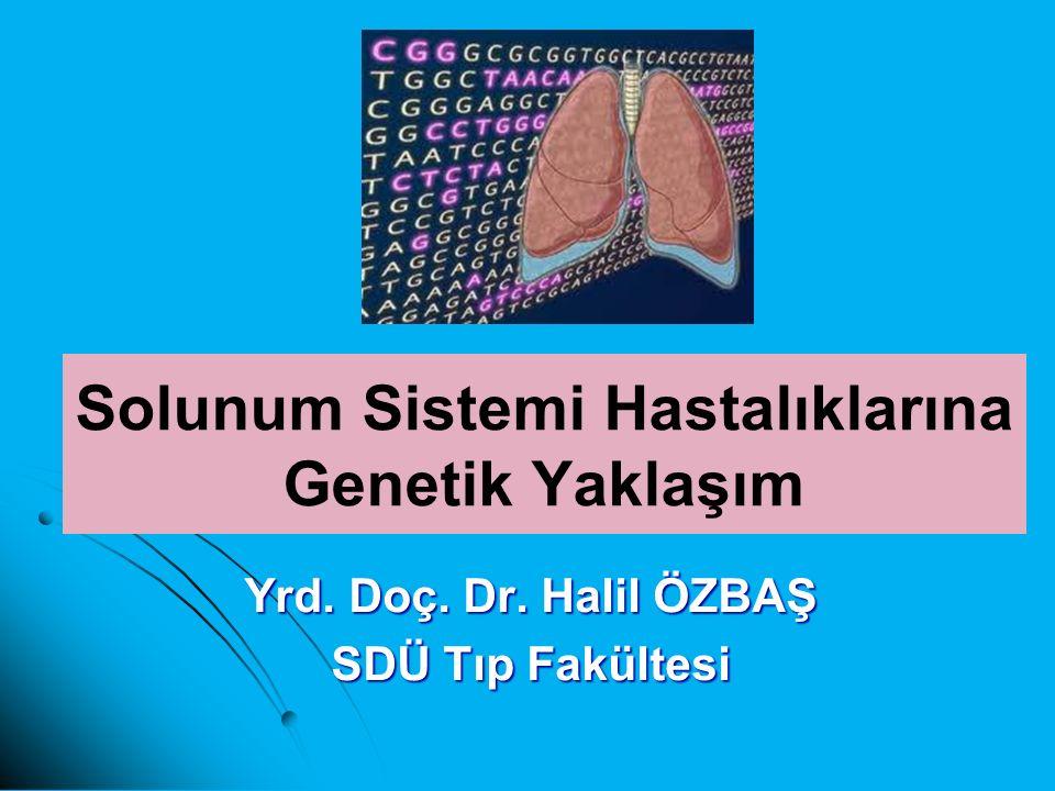 Solunum Sistemi Hastalıklarına Genetik Yaklaşım