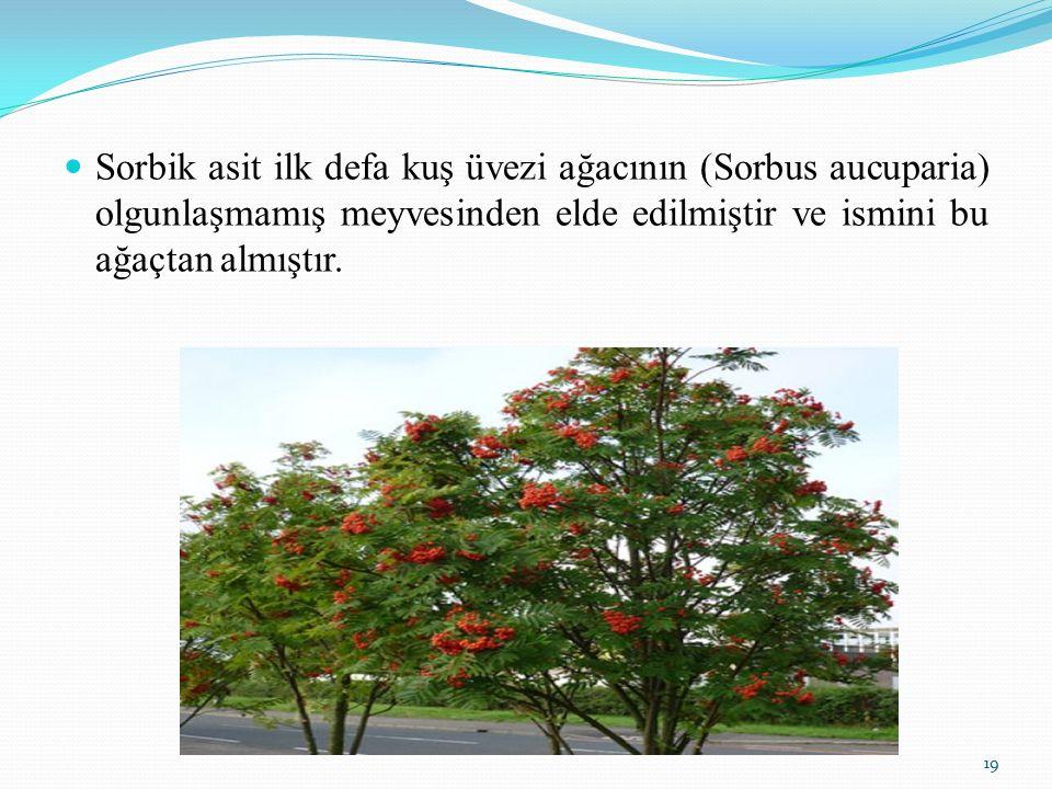 Sorbik asit ilk defa kuş üvezi ağacının (Sorbus aucuparia) olgunlaşmamış meyvesinden elde edilmiştir ve ismini bu ağaçtan almıştır.