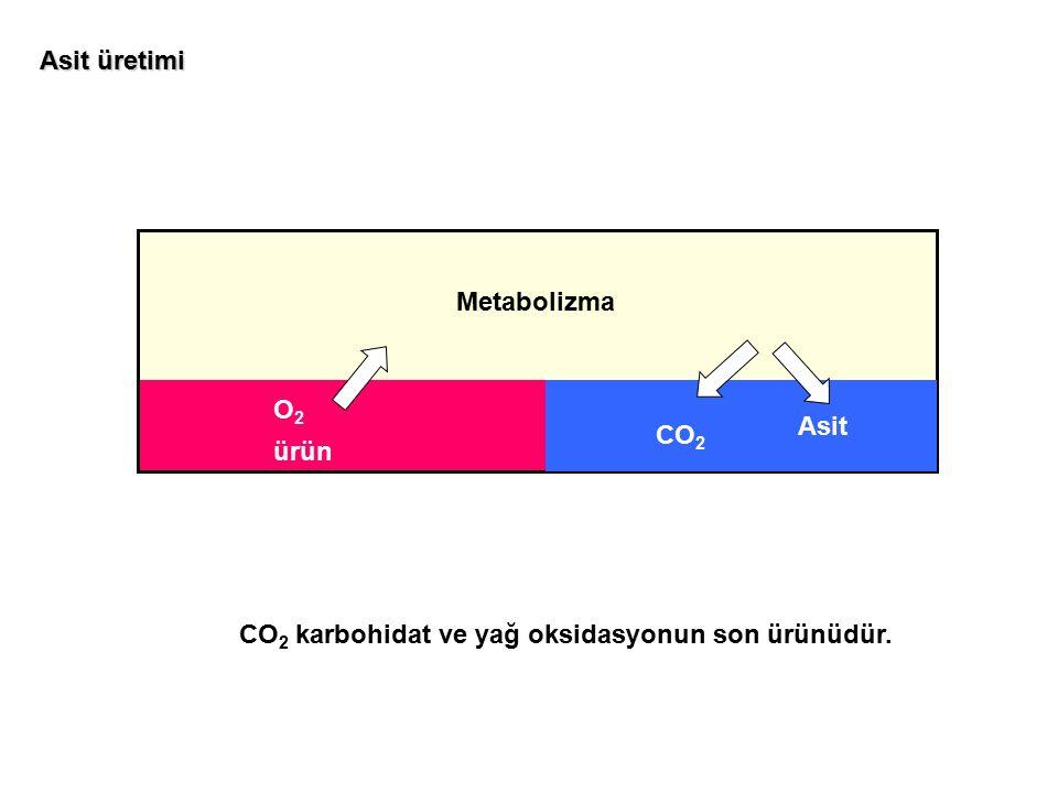 Asit üretimi Metabolizma O2 Asit CO2 ürün CO2 karbohidat ve yağ oksidasyonun son ürünüdür.