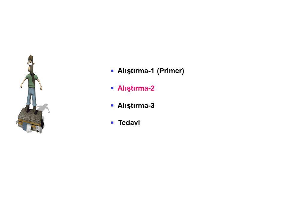 Alıştırma-1 (Primer) Alıştırma-2 Alıştırma-3 Tedavi