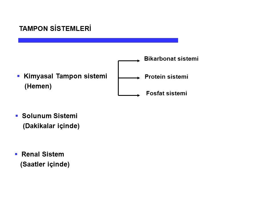 Kimyasal Tampon sistemi (Hemen)