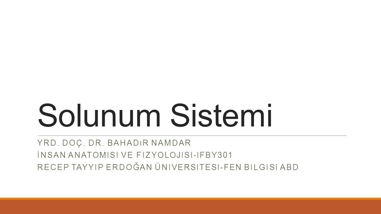Solunum Sistemi Yrd. Doç. Dr. Bahadır Namdar