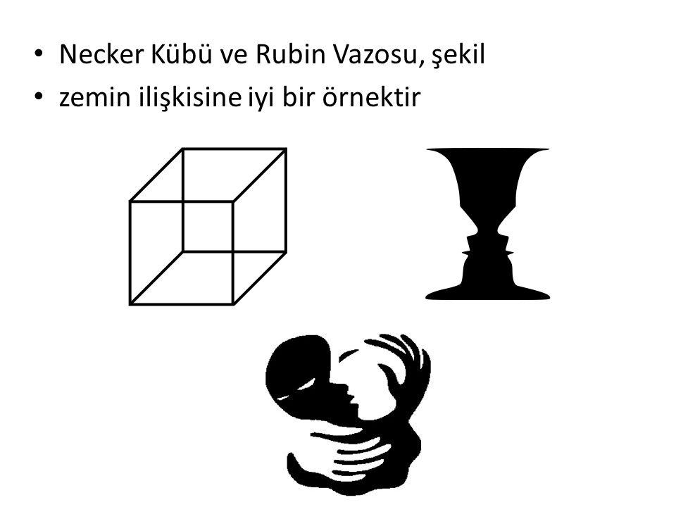 Necker Kübü ve Rubin Vazosu, şekil