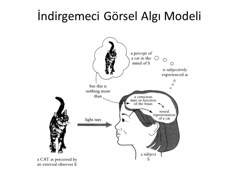 İndirgemeci Görsel Algı Modeli
