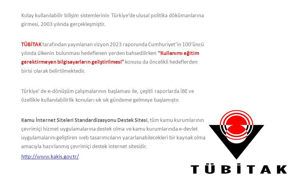 Kolay kullanılabilir bilişim sistemlerinin Türkiye'de ulusal politika dökümanlarına girmesi, 2003 yılında gerçekleşmiştir.