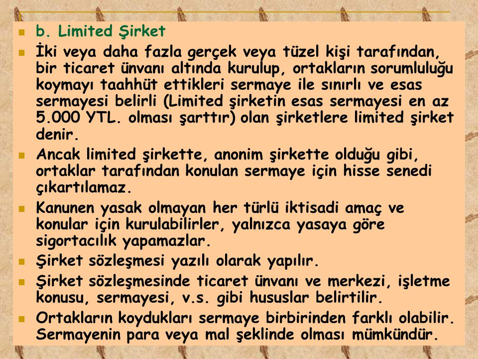 b. Limited Şirket