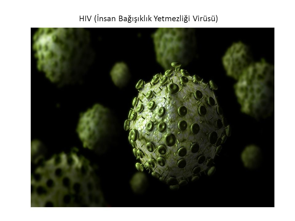 HIV (İnsan Bağışıklık Yetmezliği Virüsü)