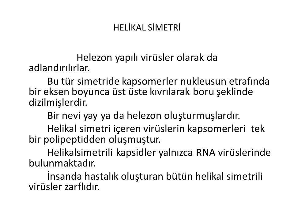 HELİKAL SİMETRİ
