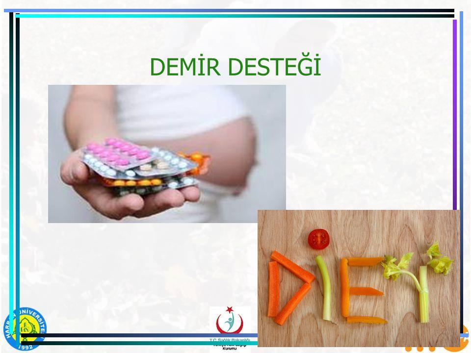 DEMİR DESTEĞİ