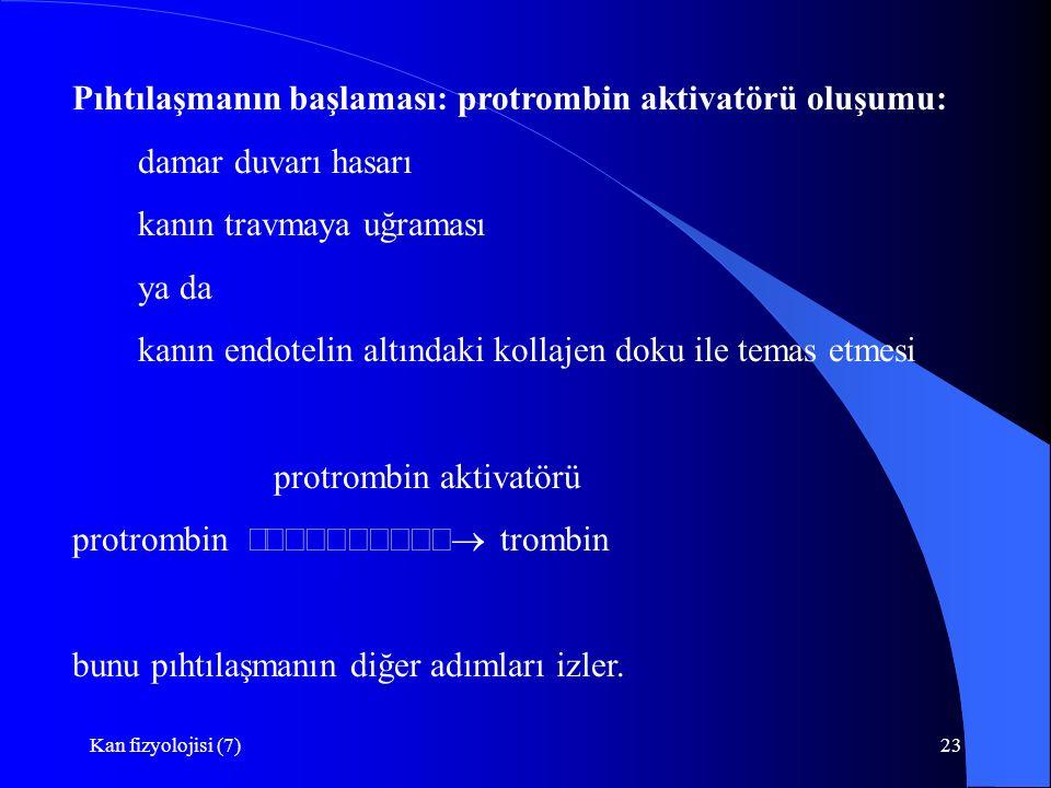 Pıhtılaşmanın başlaması: protrombin aktivatörü oluşumu: