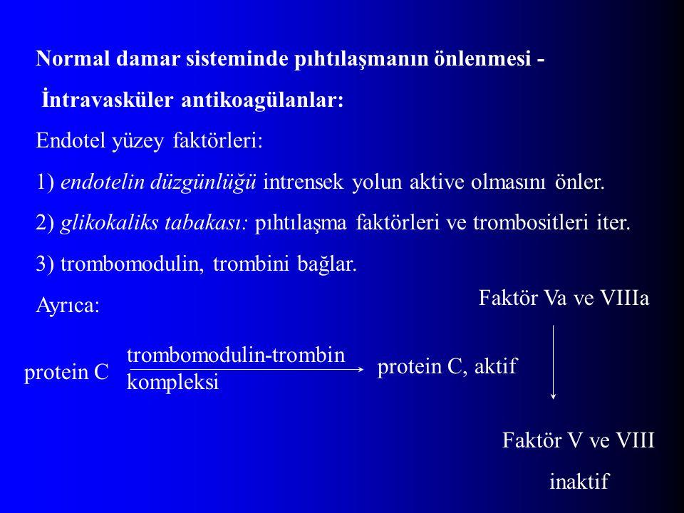 Normal damar sisteminde pıhtılaşmanın önlenmesi -