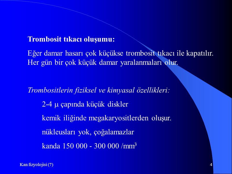 Trombosit tıkacı oluşumu: