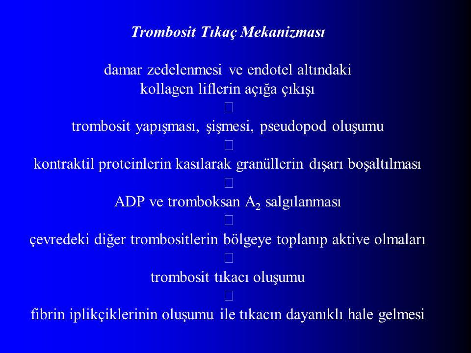 Trombosit Tıkaç Mekanizması