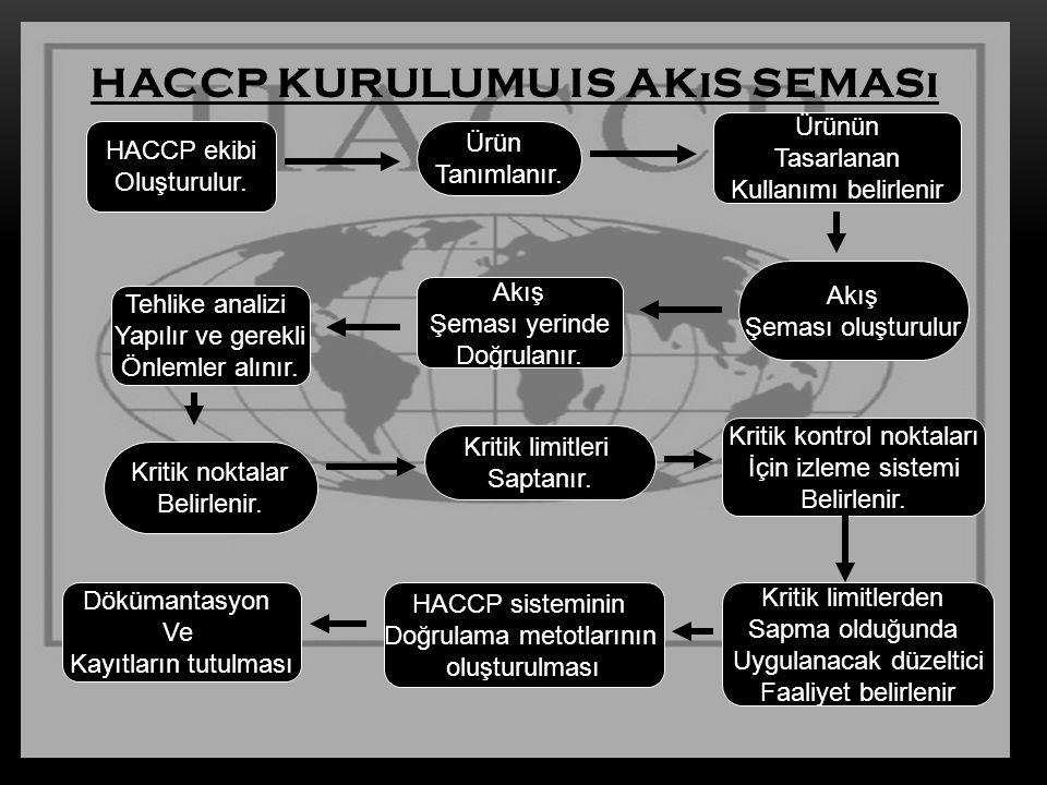 HACCP kurulumu is akıs seması