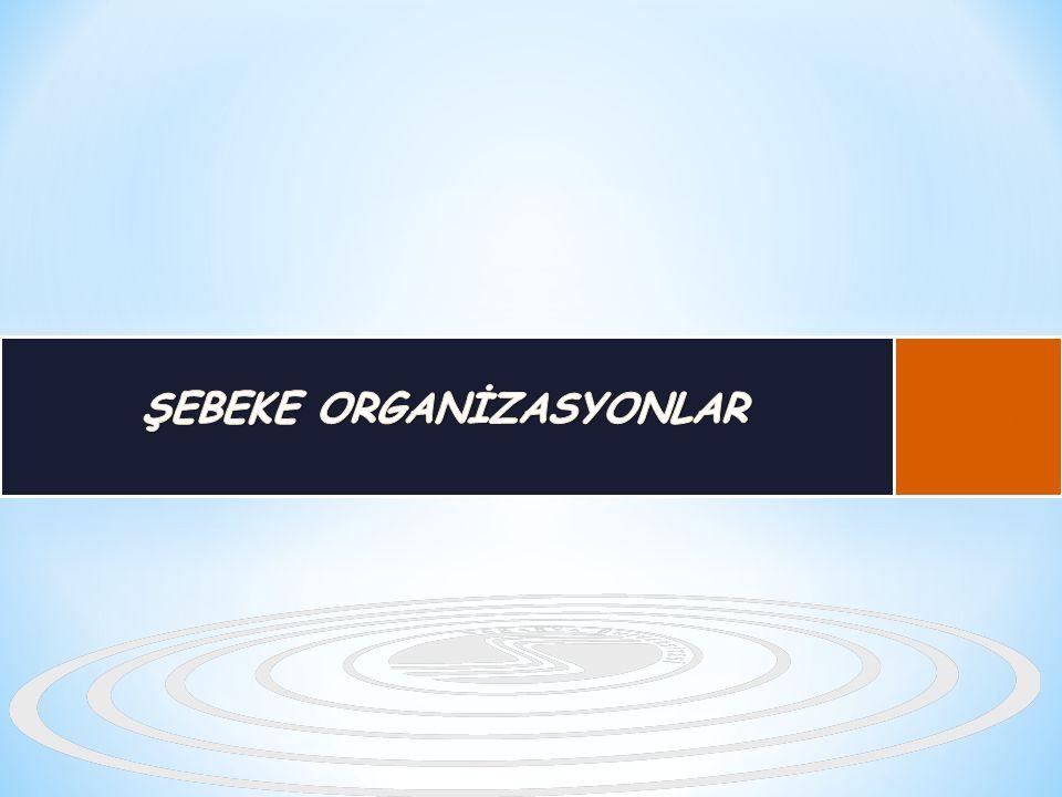 ŞEBEKE ORGANİZASYONLAR