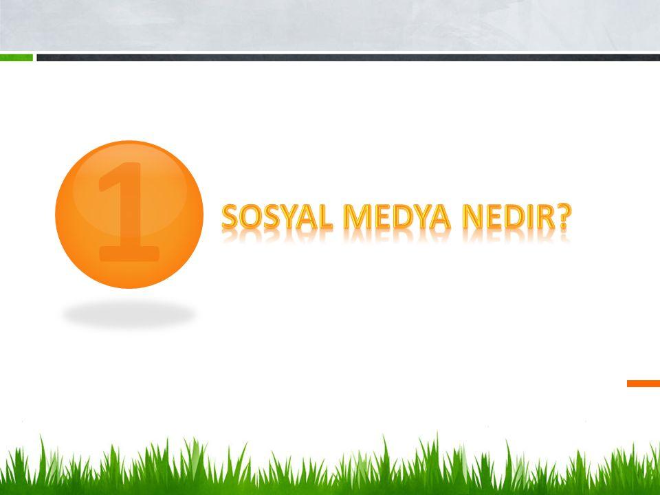 1 Sosyal Medya Nedir