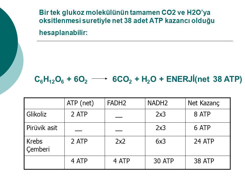 C6H12O6 + 6O2 6CO2 + H2O + ENERJİ(net 38 ATP)