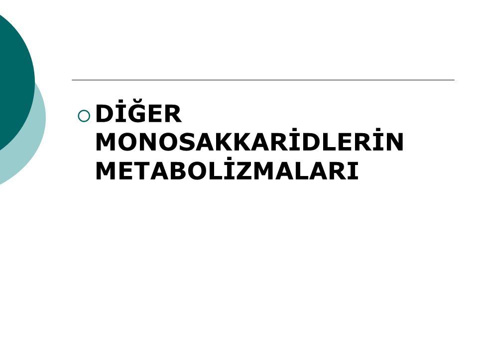 DİĞER MONOSAKKARİDLERİN METABOLİZMALARI