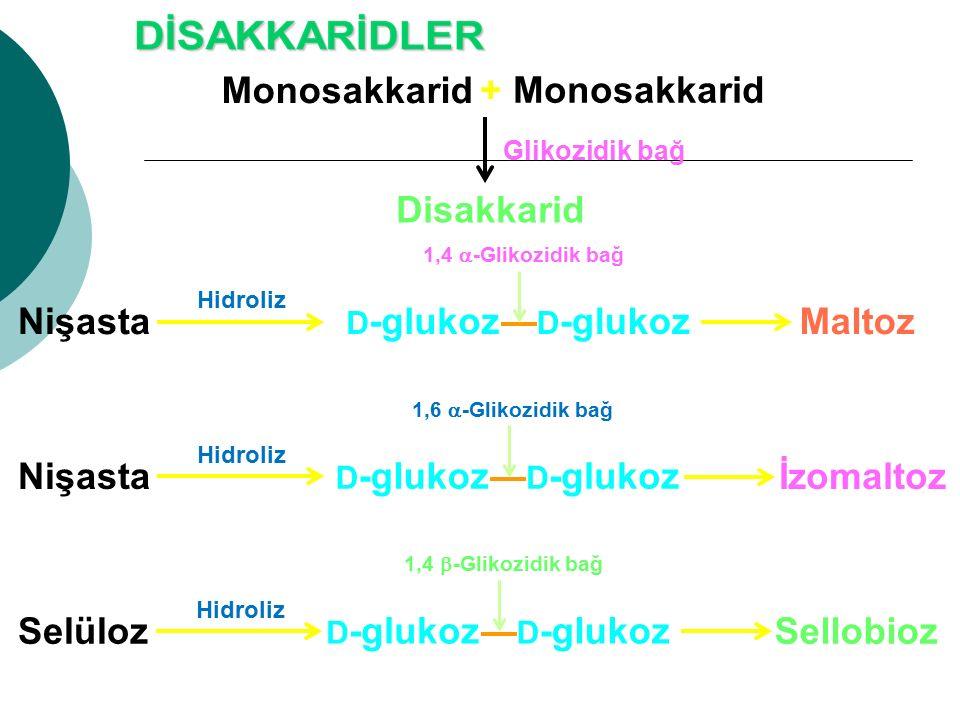 Monosakkarid + Monosakkarid Disakkarid Maltoz Nişasta İzomaltoz