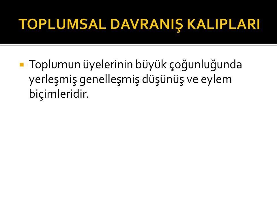 TOPLUMSAL DAVRANIŞ KALIPLARI