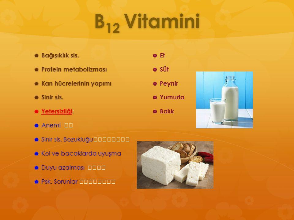 B12 Vitamini Bağışıklık sis. Protein metabolizması