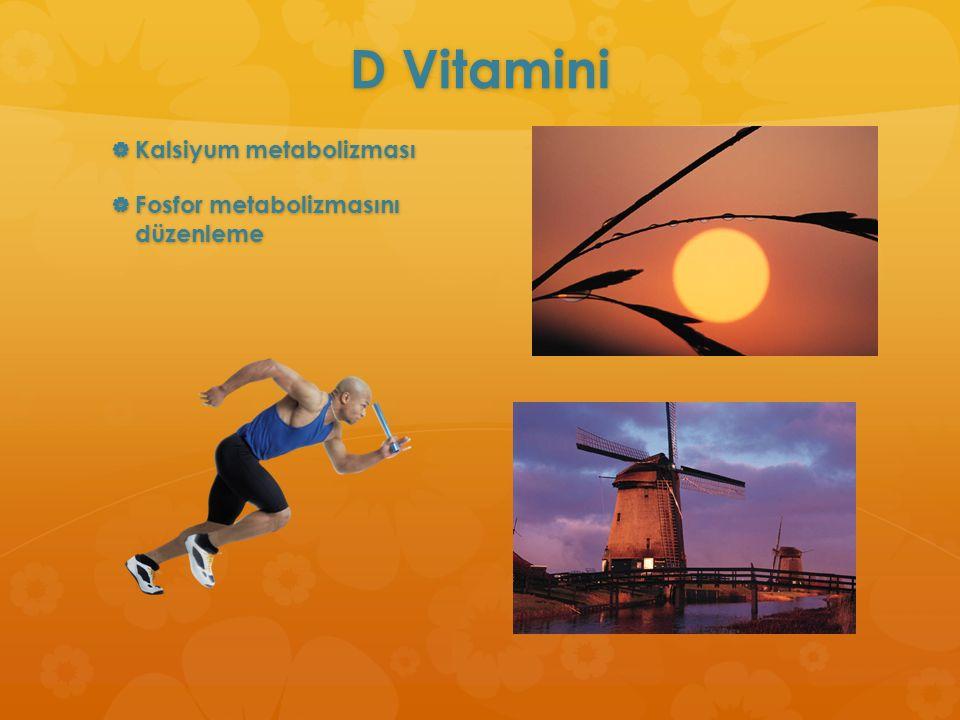 D Vitamini Kalsiyum metabolizması Fosfor metabolizmasını düzenleme