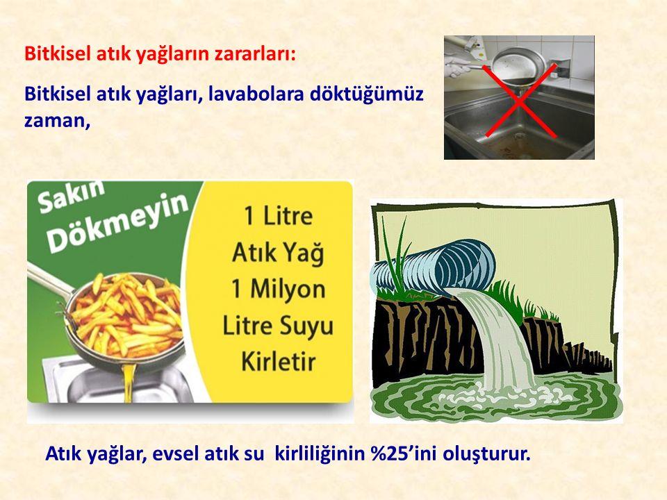 Bitkisel atık yağların zararları: