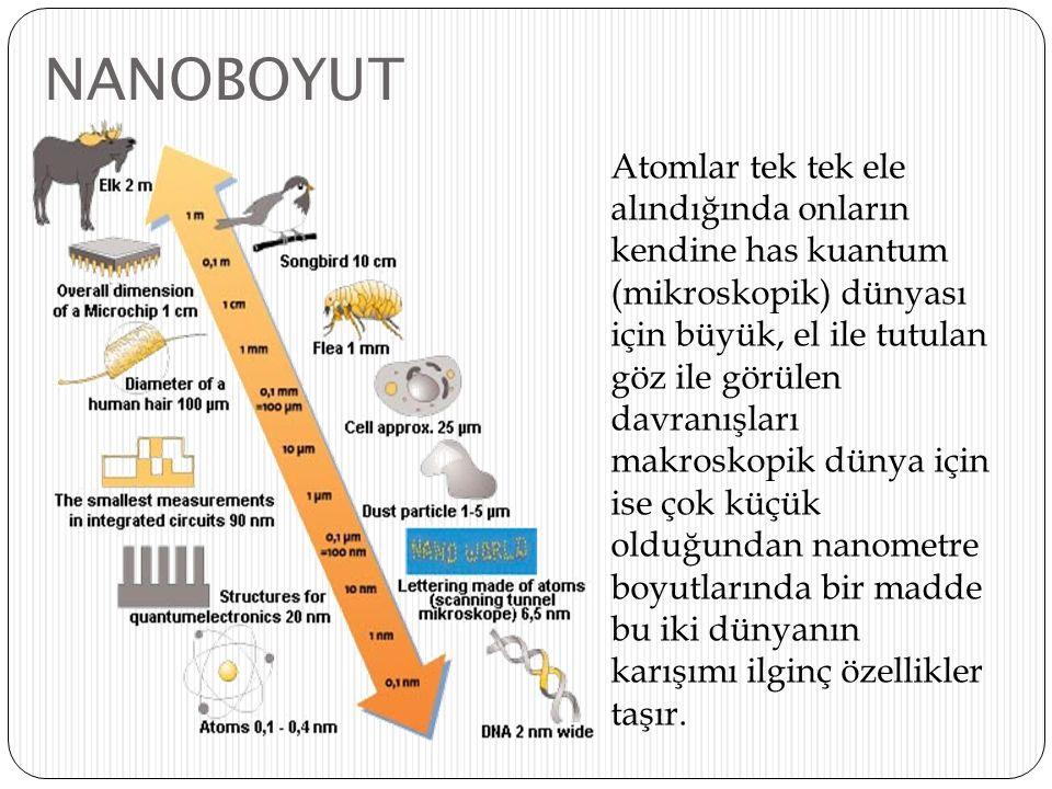 NANOBOYUT
