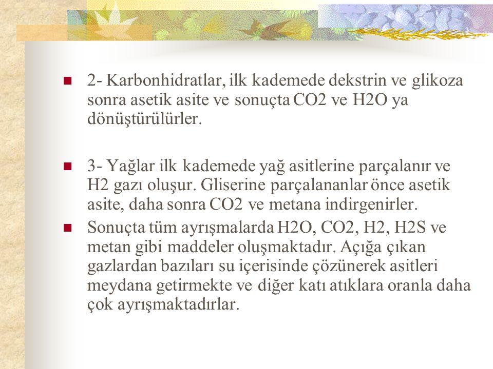 2- Karbonhidratlar, ilk kademede dekstrin ve glikoza sonra asetik asite ve sonuçta CO2 ve H2O ya dönüştürülürler.