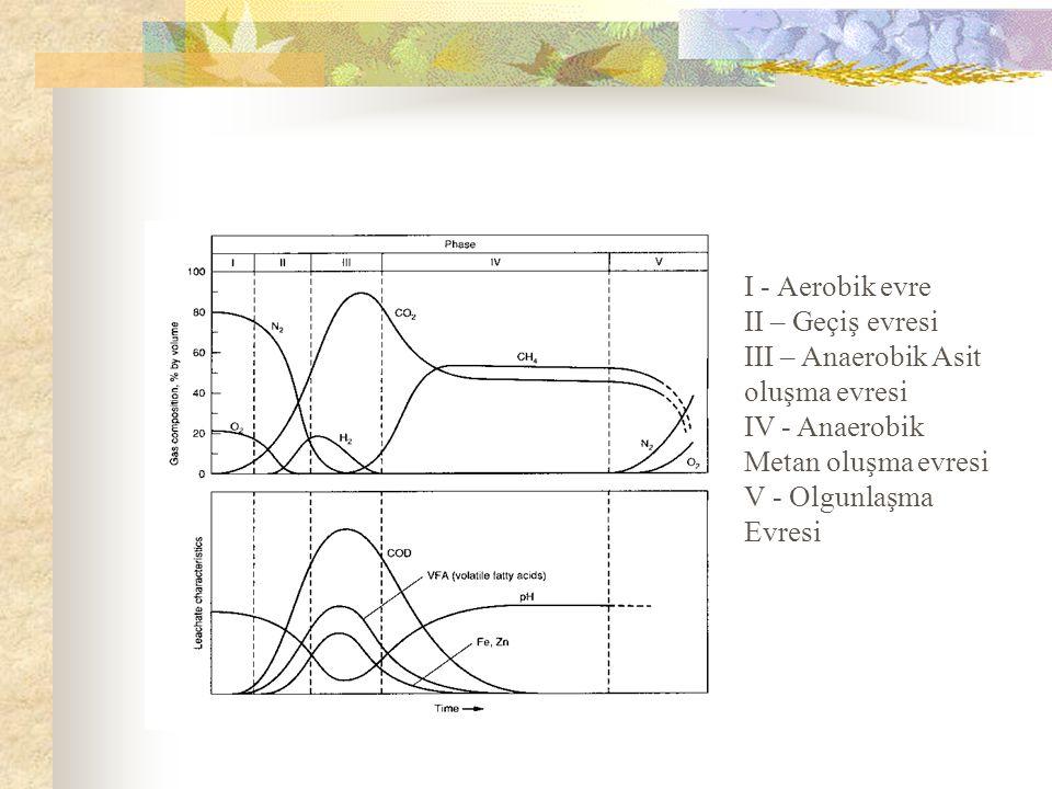 I - Aerobik evre II – Geçiş evresi. III – Anaerobik Asit oluşma evresi. IV - Anaerobik Metan oluşma evresi.