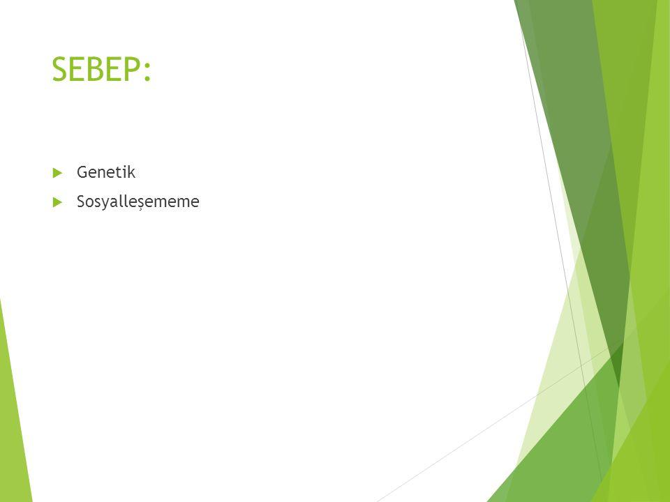 SEBEP: Genetik Sosyalleşememe