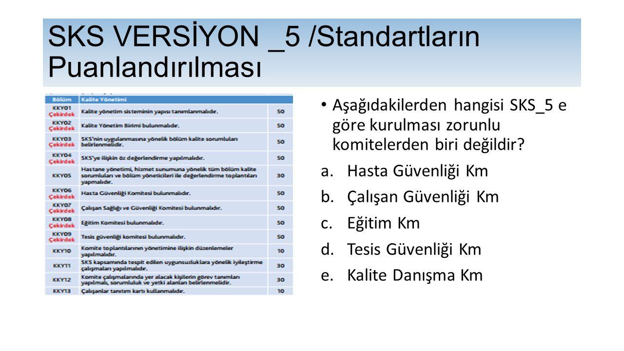 SKS VERSİYON _5 /Standartların Puanlandırılması